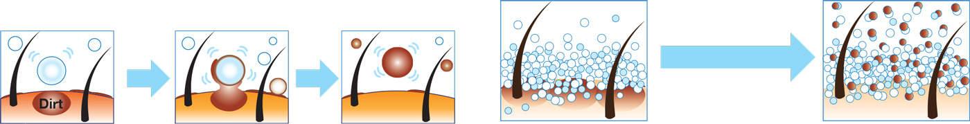 bottom_diagram_shamp_surf
